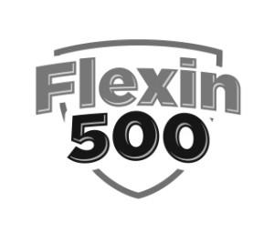 Logo Flexin - SupleNaTak.pl