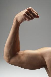 Biceps-SupleNaTak.pl